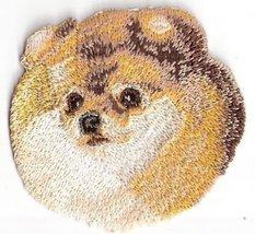 Pomeranian Dog Breed Embroidery Patch - $7.92