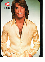 Andy Gibb Shaun Cassidy teen magazine pinup clipping crossed arms white shirt