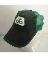 Dupont Seeds Trucker Hat Cap Mesh Woven Straw Green Black Strapback Pioneer - $19.30