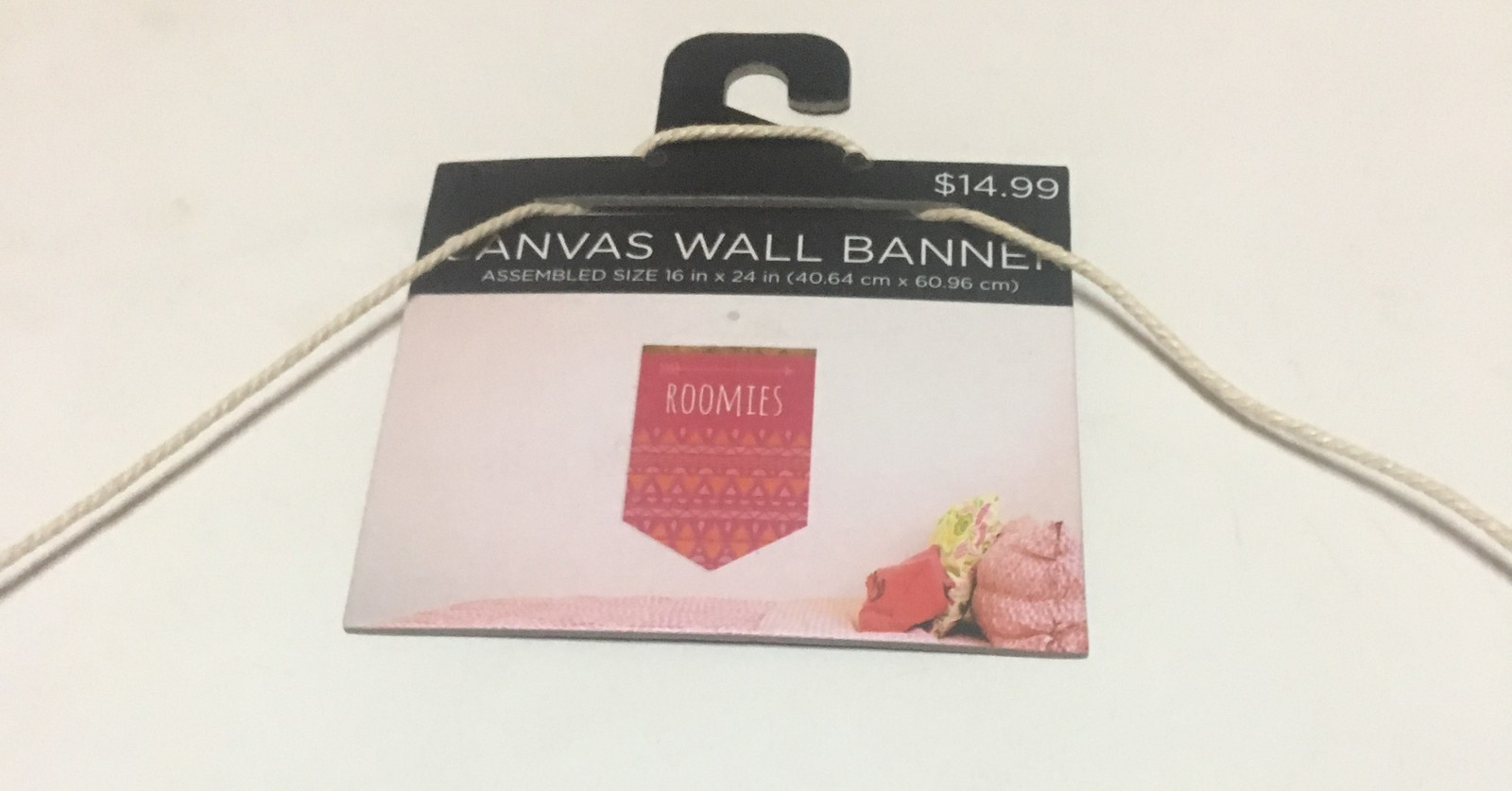 """ROOMIES Canvas Wall Hanging 24"""" x 16"""" Art Tap"""