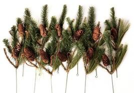 CraftMore Set of 12 Wild Wood Pine Picks image 1