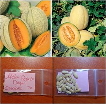 Melon ''Retato Degli Ortolani'' ~30 Top Quality Seeds - Amazing Flavor -... - $15.38