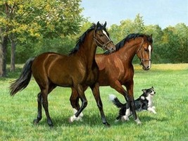 5D Diamond Painting Two Horses and a Dog in the Meadow Kit - $14.99+