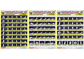 Posters JUDO. Yellow  belt  1+1+1 poster.The technique of judo. - $24.90