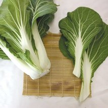 5M Seeds of Joi Choi Pac Choi - $52.57