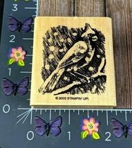 Stampin' Up! Cardinal Bird Winter Branch Rubber Stamp 2003 Wood Mount #N139 - $5.69