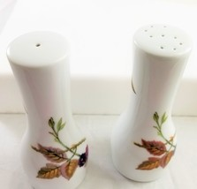 ROYAL WORCESTER china England EVESHAM GOLD Pattern Salt & Pepper Shaker ... - $23.75
