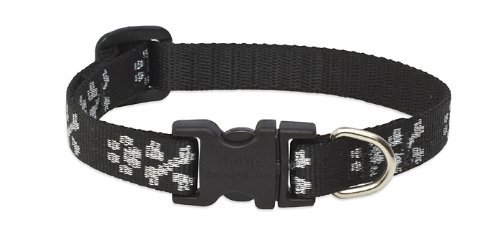 "LupinePet Originals 1/2"" Bling Bonz 10-16"" Adjustable Collar for Small Dogs"