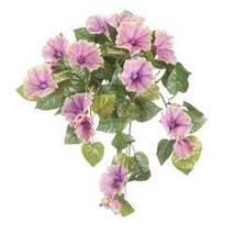 Petunia Hanging Stem by OakRidge Outdoor-Pink - $17.74