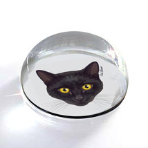 """Black Cat Yellow Eyes Illustration Art 2"""" Crystal Dome Magnet or Paperwe... - $15.99"""