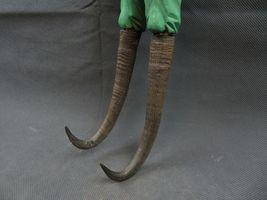 Antique 1900 German Black Forest Carved Wood Figural Chamois Horns Hook Rack image 5