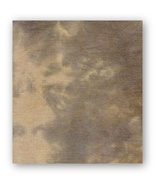 FABRIC CUT 40ct murky linen 18x27 Picture This Plus for Quaker Halloween  - $27.50