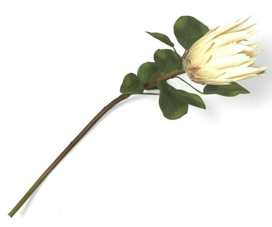 "Opalhouse Faux Protea Stem Artificial Flowers 26"" Pink Green One Dozen 12 Stems"