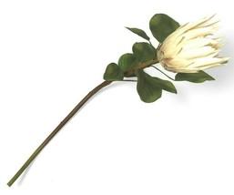 "Opalhouse Faux Protea Stem Artificial Flowers 26"" Pink Green One Dozen 12 Stems image 1"