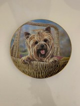 Danbury Mint Carry Me Home by Paul Doyle Yorkshire Terriers Plate - $9.89