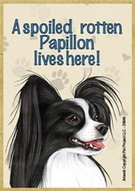 A spoiled rotten Papillon lives here! Blk Wht Fridge Dog Magnet 2.5X3.5 ... - $4.99