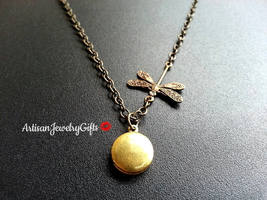 Tiny Locket Dragonfly Necklace Tiny Brass Locket Antique Brass Dragonfly... - $28.00+