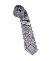 Berlioni Italy Men's Classic Paisley Striped Necktie Tie Handkerchief Gift Set image 7