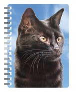 Cat 3D Notebook - $5.23