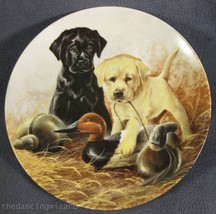 Perfect Set Labrador Retrievers Collector Plate Field Puppies Lynn Kaatz... - $27.95