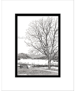 Bench at Boscobel, Hudson River, Limited Edition, Matted, Pen and Ink Print - $34.00