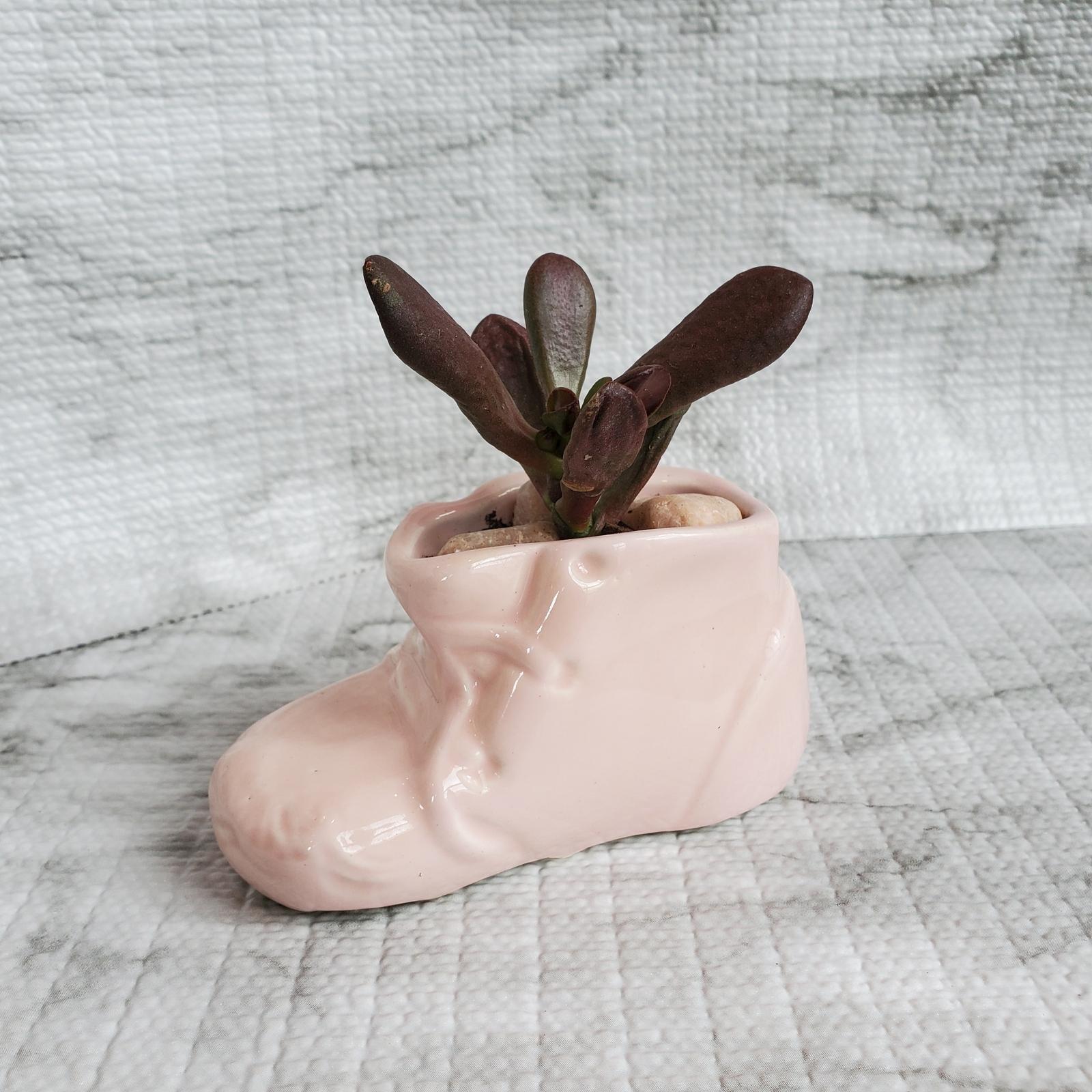 Pinkbootplanter ogreearjade 1