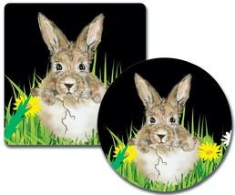 Custom personalized round/square sandstone or fabric-rubber coasters-bun... - $18.25+