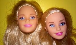 Barbie Fashionistas Blonde Doll Heads  - $12.99