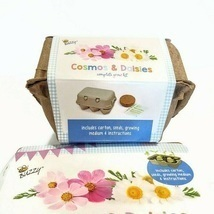 Buzzy Cosmos and Daisies Complete Grow Kits Seeds - $5.00