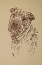 SHAR PEI DOG ART #34 Stephen Kline adds your dogs name free into print. ... - $49.95