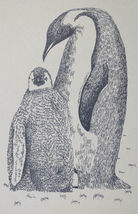 PENGUINS Drawn from Words Art Print #88 by Stephen Kline MOM BABY Happy ... - $49.95