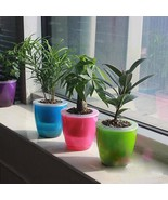 Flower Pot Self Watering Abs Transparent Planter Water Absorption Garden... - $9.99