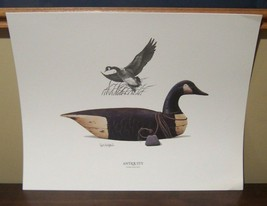 Iowa DU Ducks Unlimited Print by Paul Bridgford - $9.89