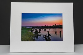 photograph of logs in the Colorado river.  - $12.00
