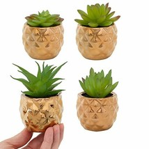 Home Trends 4 Pack Fake Succulent Plants in Gold Pot Artificial Plants H... - ₹2,142.75 INR