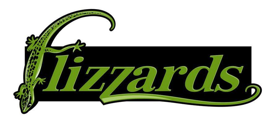 Flizzards website thumb960