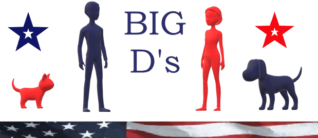 A welcome banner for Big D's-Barber Hairstylist,Pet Grooming Supplies,Flags,Bandanas,Doo Rags + More