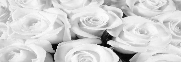 Superieur Belle Roses Closet