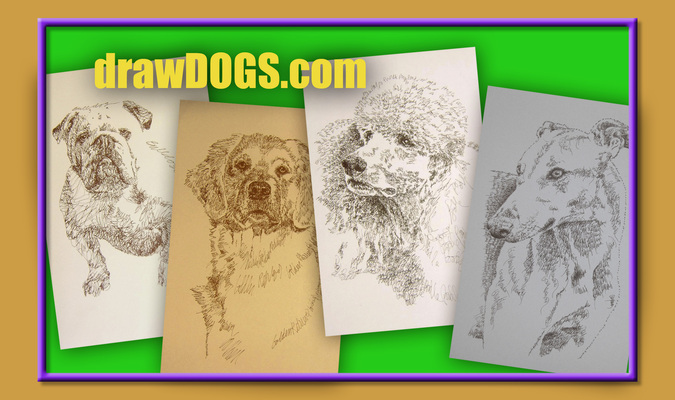 A welcome banner for drawDOGS