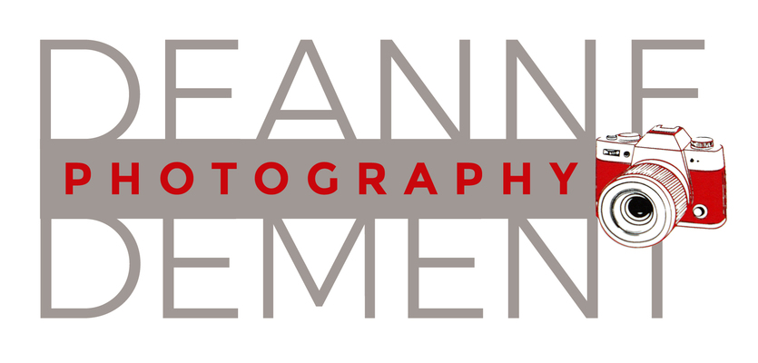 A welcome banner for Deannes Treasures  & Deanne Dement Photography