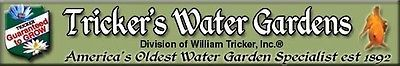 A welcome banner for William's store