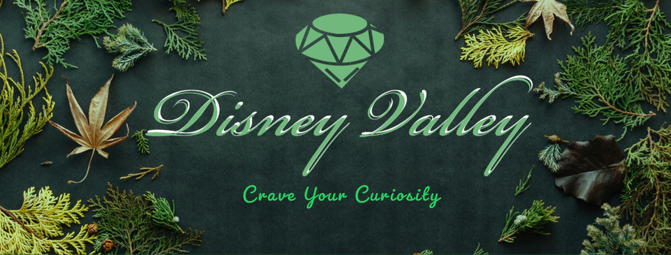 A welcome banner for Disney Valley's Store