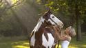 Horse 0094