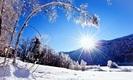 Nature-snow-winter-sun-mountain-tree