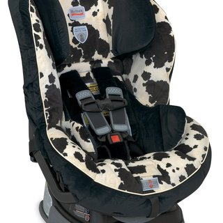 Preview image of a Car Safety Seats item