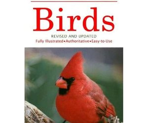 Birds: A Guide to Familiar Birds of North America Herbert S. Zim/ Ira N. Gabriel, an item from the 'Community Picks: Spring has sprung' hand-picked list