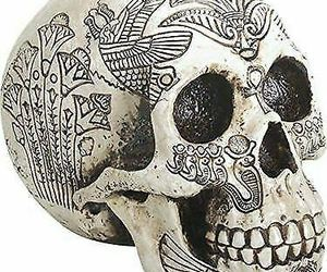 """Ebros Bone Ancient Egyptian God Paranormal Scarab Dung Beetle Skull Statue 8.5"""", an item from the 'Skulduggery' hand-picked list"""