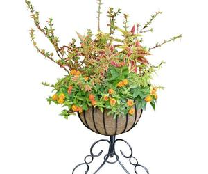Classic Urn Free Standing Planter and Coco Liner Set, an item from the 'Pretty Planters' hand-picked list
