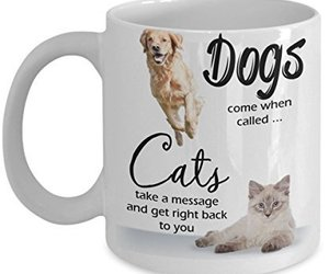 Dogs And Cats Coffee Mug Funny Sayings Quotes Animal Lovers, an item from the 'Dog and Cat Lovers' hand-picked list