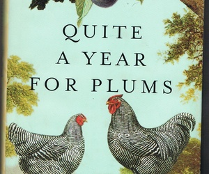 Hardbound Book Novel Quite a Year for Plums by Bailey White, an item from the 'Community Picks: A Great Read' hand-picked list